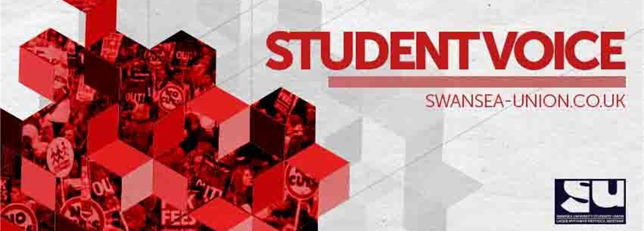 Statement On University Strike Action Strikeaid